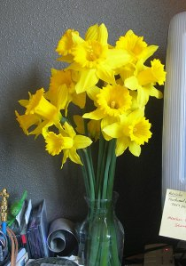 daffs-bouquet